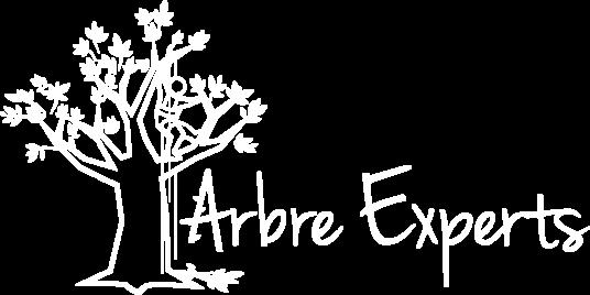 Arbre Experts